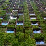 מהי בנייה ירוקה? כל היתרונות שאתם חייבים להכיר