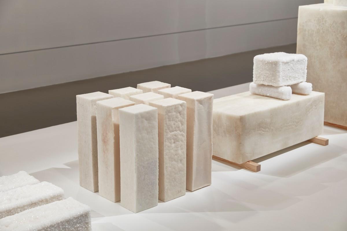 ארז נאבי פנה מהנציגים הבולטים של העיצוב הטבעוני